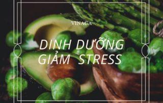 Các chiến lược dinh dưỡng giúp giảm bớt lo lắng - Bởi Dầu gấc Việt