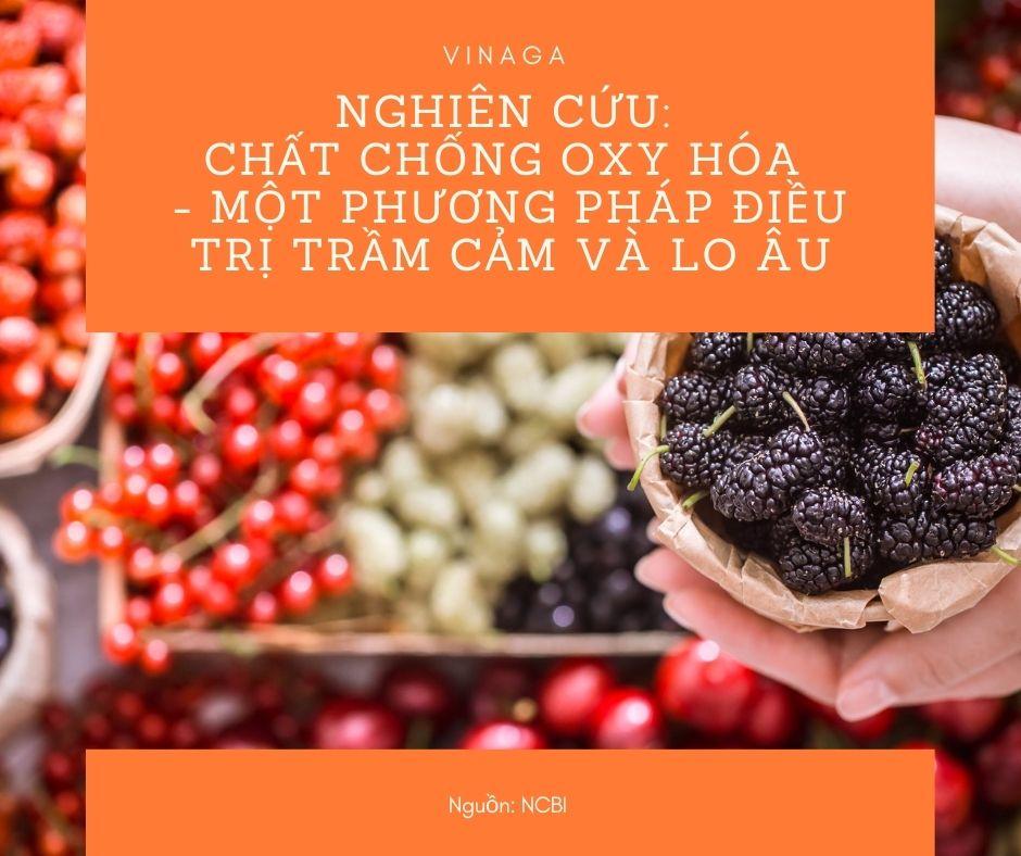 Chất chống oxy hóa - một phương pháp điều trị trầm cảm và lo âu - Từ Dầu gấc Việt